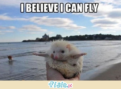 I believe I can fly!